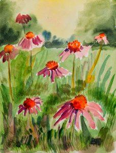 Aquarelle fleurs sauvages