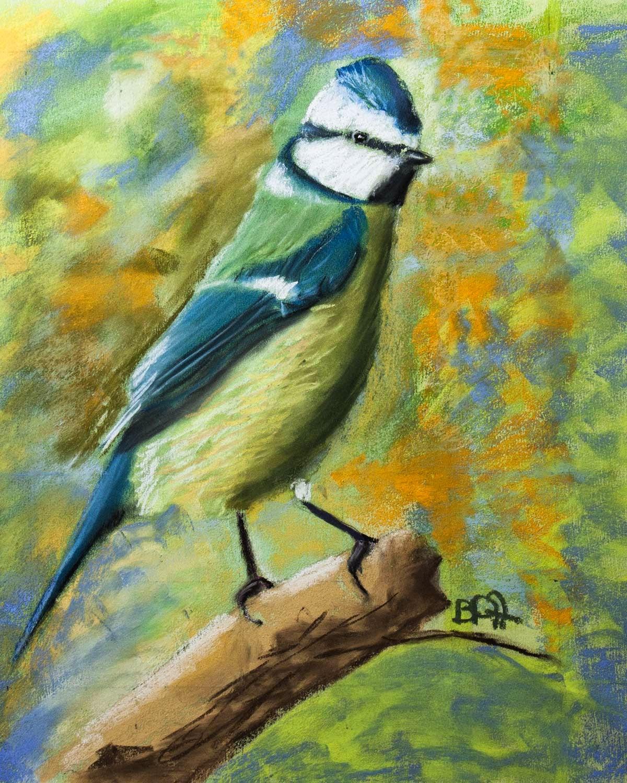 Nature Morte Personnage Paysage Oiseau M Sange Bleue